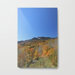 Autumn Forest under a Blue Sky, Vertical Metal Print