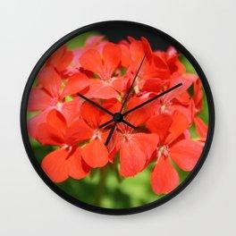 Red Geranium Pelargonium hortorum Wall Clock