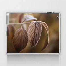 November Frost Laptop & iPad Skin