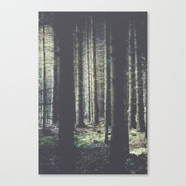 Forest feelings Canvas Print