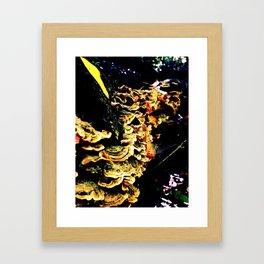 Reishi Framed Art Print
