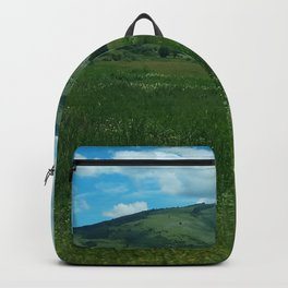 green and blue rapsody Backpack