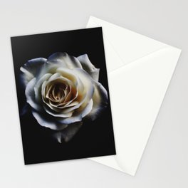 WHITE - ROSE - NATURE Stationery Cards