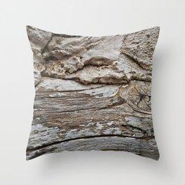 029 Throw Pillow