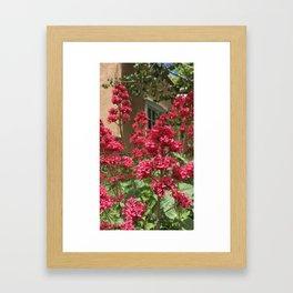 Santa Fe Flowers Framed Art Print