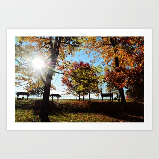Autumnal sunshine Art Print
