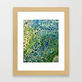 BulbasaurIV Framed Art Print