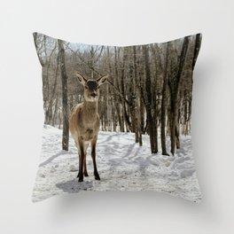 oh deer (full frame) Throw Pillow