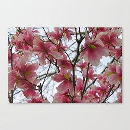 Pink Flowers Everywhere Canvas Print