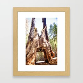 As Big As You Can Get Framed Art Print
