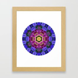 Floral finery - vivid kaleidoscope 20170321_135334 e k1 Framed Art Print