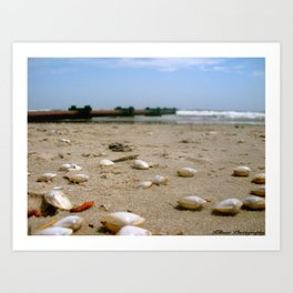 By the Shore Art Print