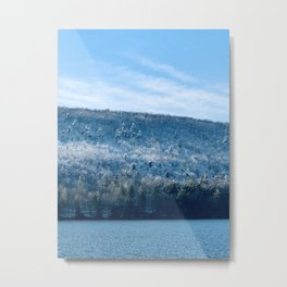 Frosted Tree-tops Metal Print