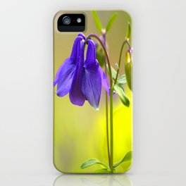Purple Columbine In Spring Mood iPhone Case