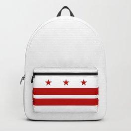 Washington DC Backpack
