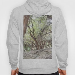 Perspective of Sacsayhuaman trees Hoody