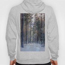 Sun forest Hoody