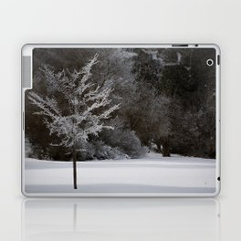 Winter Magic Laptop & iPad Skin
