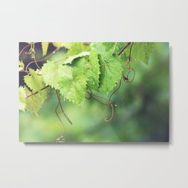 Thirst Quencher Metal Print