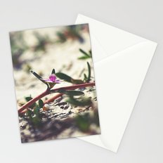 Along the Beach Stationery Cards