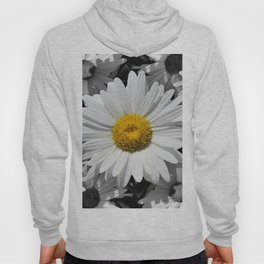 Cheerful Daisy Flower A197 Hoody