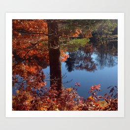 Fall on the Pond Art Print