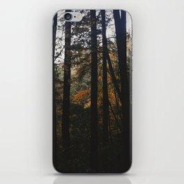 Autumn Woods iPhone Skin
