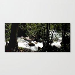 Where Fall Creek Cascades into Vallecito Creek Canvas Print