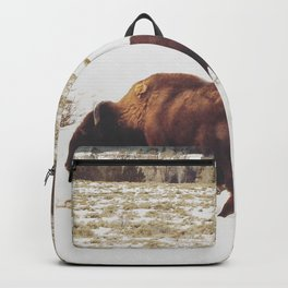 Tetons Trio Backpack
