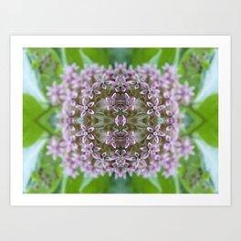 Kaleidoscope Pink Milkweed Flower Macro Photograph Art Print
