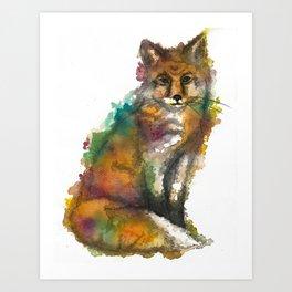 Nature Fox Art Print