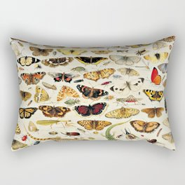 "Jan van Kessel the Elder ""An Extensive Study of Butterflies, Insects and Seashells"" Rectangular Pillow"