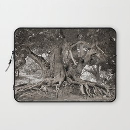 1000 years old chestnut tree Laptop Sleeve