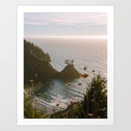 Golden Coast Art Print