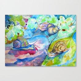 SNAILS AFTER RAIN Canvas Print