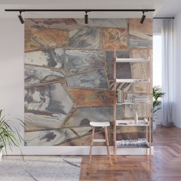 Astronomite Wall Mural