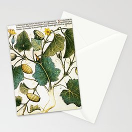 Leaves & Flowers Stationery Cards