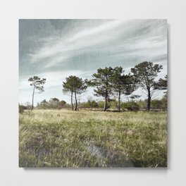 Almost a Forest Metal Print