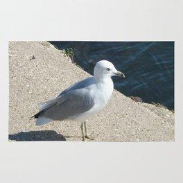 Seagull, Lake Michigan, Shoreline Rug