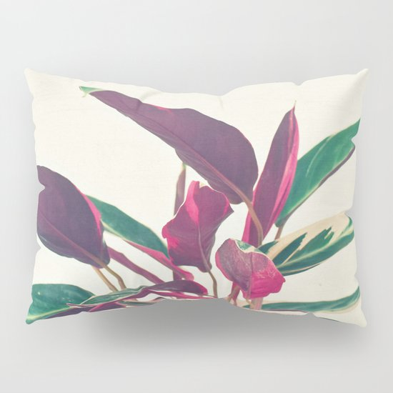 Prayer Plant Pillow Sham