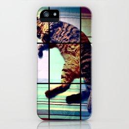 Cat (mosaico) iPhone Case