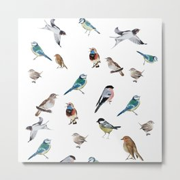 I love birds Metal Print