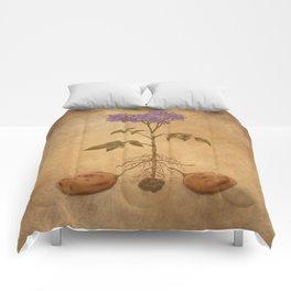Anatomy of a Potato Plant Comforters