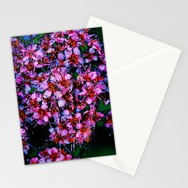 Minor Key Stationery Cards