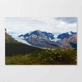 The Athabasca & Snow Dome Glaciers in Jasper National Park, Canada Canvas Print