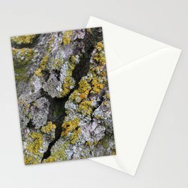 Lichen #1 Stationery Cards
