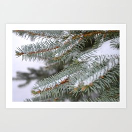 Softly, One Winter Day Art Print
