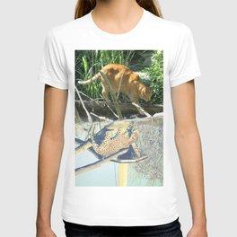 Cat Tabby Panther Leopard Tree Rainforest T-shirt