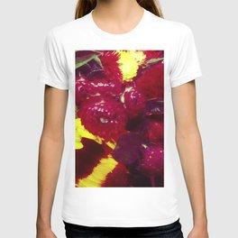 Sunflower and Cockscomb T-shirt