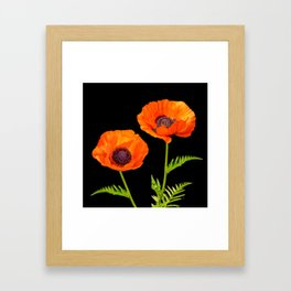 Two beautiful  poppies Framed Art Print